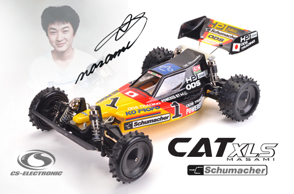 CS-Electronic Time for a Project - CAT XLS Masami!
