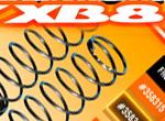 SMI XRAY News XB8 Progressive Federn