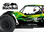 ACT Europe 4WD Brushless Desert Buggy 1/8 RTR